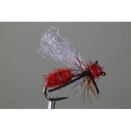 Magma Ant - Crimson