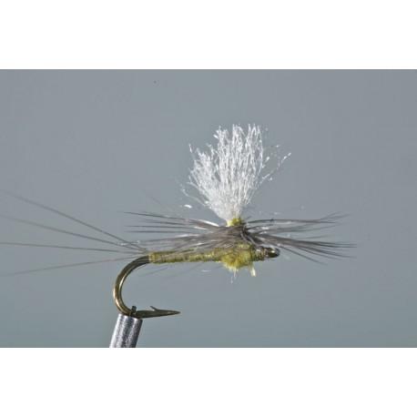 Slate Wing Olive Parachute