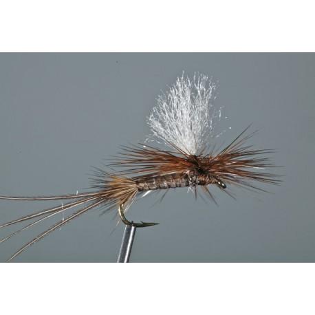 Brown Drake Parachute