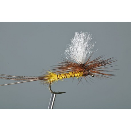 Isonychia Parachute