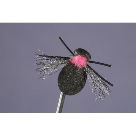 Fathead Beetle